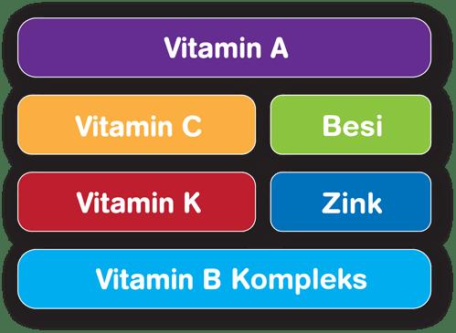 Vitamin A, Vitamin C, Iron, Vitamin K, Zinc, Vitamin B Complex